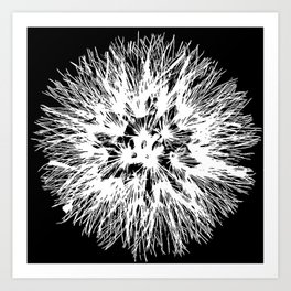 Make A Wish Dandelion Vector In White Art Print