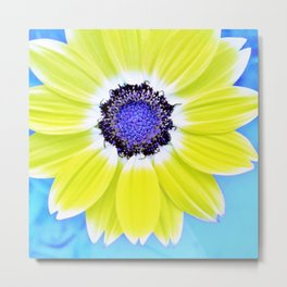 Blue Popart Sunflower Metal Print