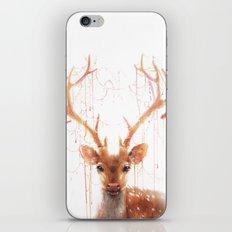 Fairy Deer iPhone & iPod Skin