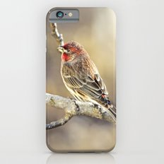 Rosy Little Finch Slim Case iPhone 6s
