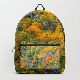 kaaterskill falls Backpack