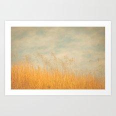 Amber Wave -- Tall Golden Grass in a Blue Ridge Highlands Pasture Art Print