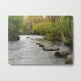 Nature or Limitation Metal Print