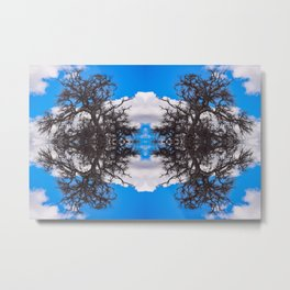 A Network of Trees in the Sky Metal Print