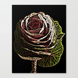 Cabbage Woodcut Canvas Print