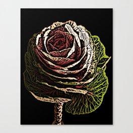 Cabbage Woodcut Canvas Print