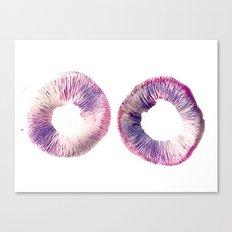 Mushroom Project - 2 Canvas Print