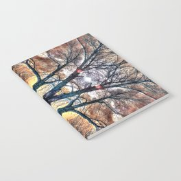 Treed Notebook
