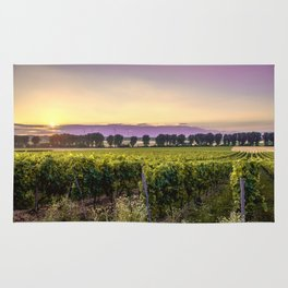 grapevine field Rug