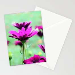 Daisies lilac Stationery Cards