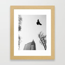 Don't trip 41 Framed Art Print
