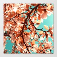 magnolia Canvas Prints featuring magnolia by blackpool