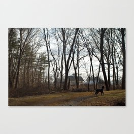 The Hunting Dog Canvas Print