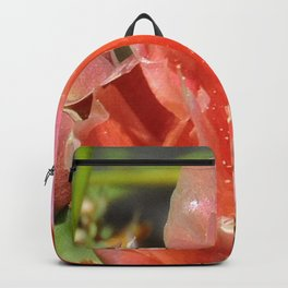 Prickly Pear Cactus Blossom with Visitor Backpack