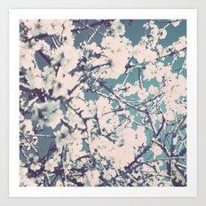 spring mediterranean almond flowers Art Print