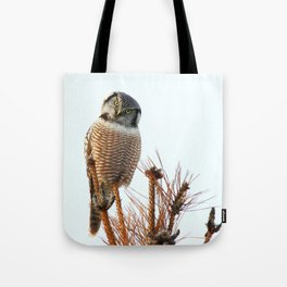 Finding the balance Tote Bag