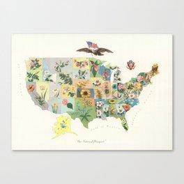 Vintage US State Flower Map (1911) Canvas Print
