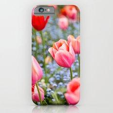 Keukenhof Tulips - Amsterdam iPhone 6s Slim Case
