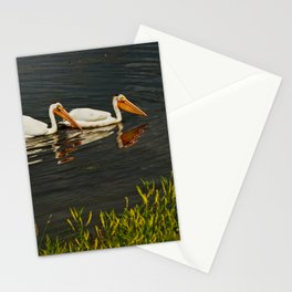 Pelicans in Edmonton - Hermitage Stationery Cards