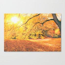 New York City Autumn Sun Canvas Print