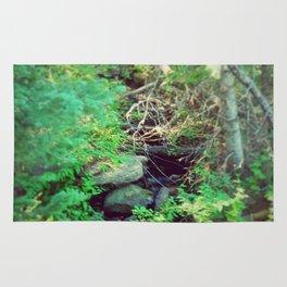 Stream of Living Water Rug