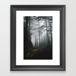 Butano Framed Art Print