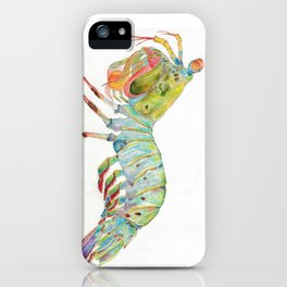 Peacock Mantis Shrimp iPhone Case