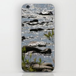 Michigan iPhone Skin