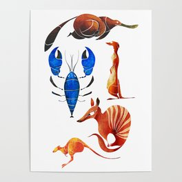Australian animals 2 Poster