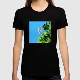 Chestnut blossom T-shirt
