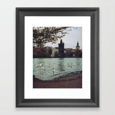 PRAGUE SWANS Framed Art Print