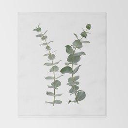 Eucalyptus Branches I Throw Blanket