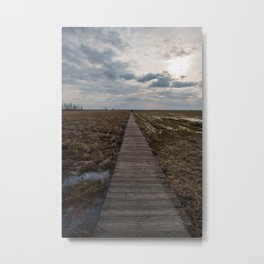 A wooden path over wetlands Metal Print