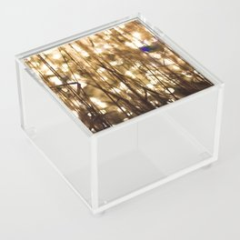 sparkle Acrylic Box