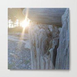Driftwood Illumination Metal Print
