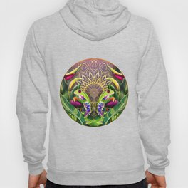 Red Eyed Tree Frog Hoody
