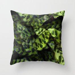 Rattlesnake Calathea  |  The Houseplant Collection Throw Pillow