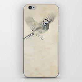 wagtail iPhone Skin