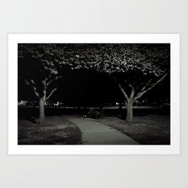 midnight sleeper Art Print
