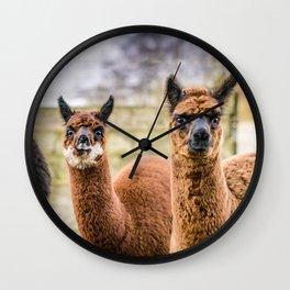 Cheeky Alpacas Wall Clock
