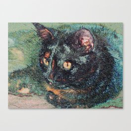 Cat. Hello Pearl Collection Canvas Print