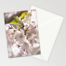 Tender Blossoms Stationery Cards