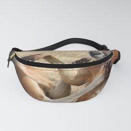 Relationships are difficult Fanny Pack