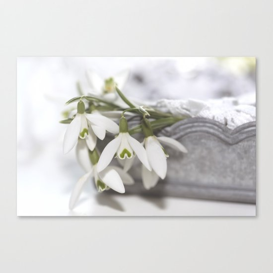 Snowdrops still life - Flower Floral Flowers #Society6 Canvas Print