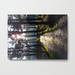 Path to the Light - Colorful Metal Print