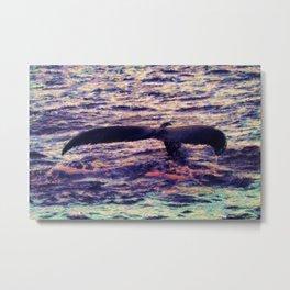Water Sunset 1 Metal Print