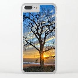 Sunburst Cottonwood Clear iPhone Case