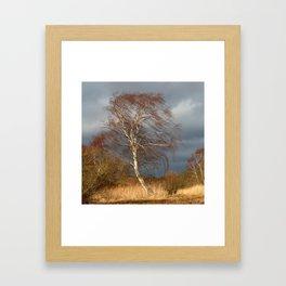Wind Direction Framed Art Print