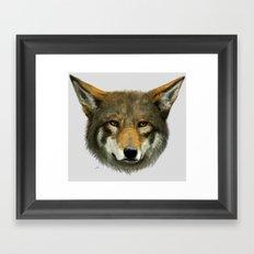 Wolf face Framed Art Print