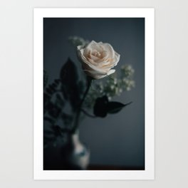 White Rose - Nature Photography Art Print